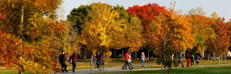 Fresno State Campus